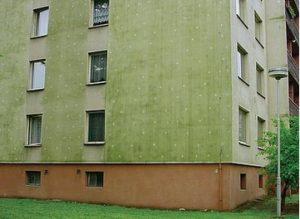 Sanace fasád – čištění fasád – odstranění zelených povlaků z fasád a střech