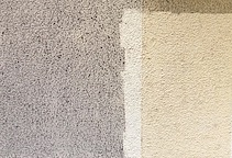 Organické nečistoty – plísně, řasy, mechy, lišejníky
